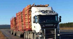 تریلی اسکانیا ۱۰۴ تنی برای حمل چوب و الوار